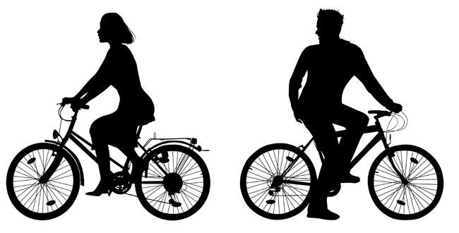 женский и мужской